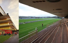 gazon-hippodrome-longchamp-travaux
