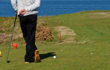 golf-links-gazon