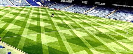 greenkeepers_fratton_park_portsmouth_pelouse_turf_grass_pitch