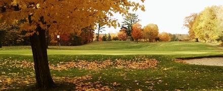 terrain-sport-ramassage-feuille-morte-pelouse-automne-gazon-golf